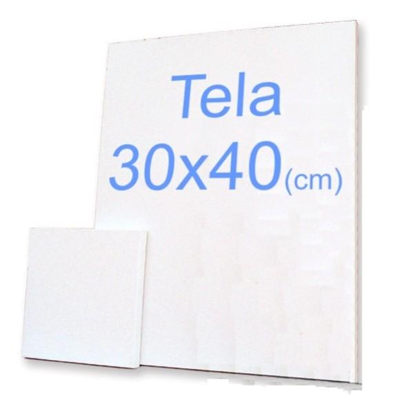 TELA P/PINTURA 30X40